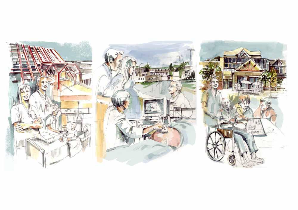 Illustrations pour un rapport annuel.